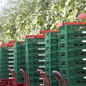 Nace la asociación ARECO para promover los envases reutilizables, que permiten ahorrar recursos y fomentar la sostenibilidad